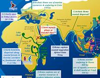 Infographics - Waterside Evolution