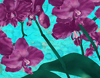 Animated pattern, #3, Orchids