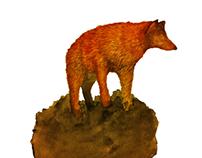 """Fox & Wolf"""