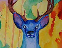 Blue Stag 11X15 Watercolor