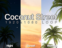Coconut Street Motion Graphic Elements