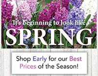 Corso's Flower & Garden Center Advertising