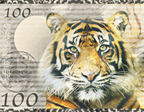 Tiger Money Design