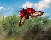 Ladybug castaway