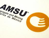 amsu corporate identity