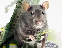 CBC Mouses
