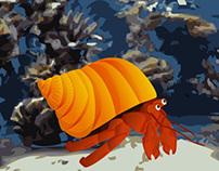 Animação do Caranguejo Eremita