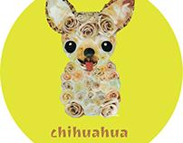 039 | Chihuahua (Rose)