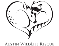 Austin Wildlife Rescue Rebranding Proposal