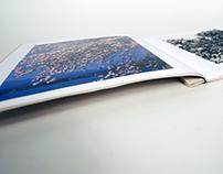 Photo Artist Book