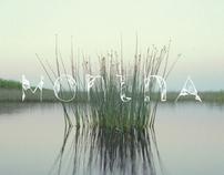 MONTHA - Handsets Typeface (Flower set)