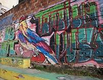 Walls 2014/ Medellin, Colombia