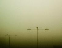misty moods #1