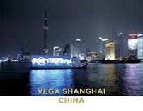 2007 SHANGHAI VEGA ID