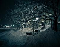 Night Snowstorm