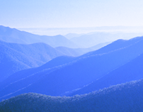 Into the Blue — Blue Mountains UNESCO heritage site