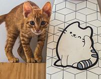 SKATE | kitten
