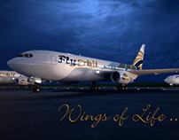 Advertising | Fly Erbil