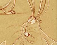 Rabbit Expression Studies