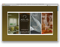 Development of The Abalone Place Website
