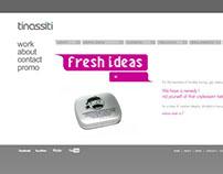 Development of the Tinassiti Flash Website
