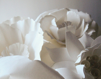 Papercut Gardens