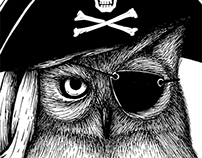 Pirate Owl