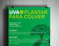 Plant to harvest