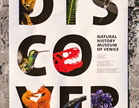 Discover – natural history museum of venice