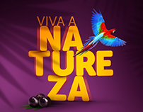 Açaí Amazonas: branding, website