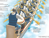 Dragon Boats infographic