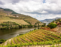 The Douro Valley​​​​​​​, Portugal