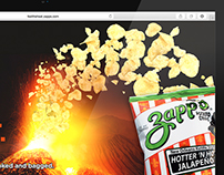 Zapp's Feel the Heat Campaign - Website & Ads
