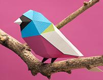 Colección Aves Argentinas - aves para armar
