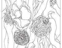 Illustration / children coloring book /