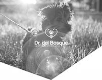 Dr. del Bosque