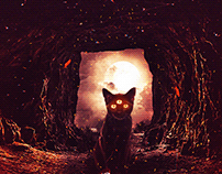 Cat Spookie
