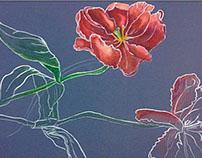Contour line flowers