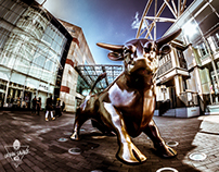 The City I live in - Photographs from Birmingham UK