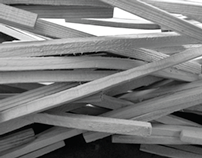 WOOD DEGENERATION: Multiplicative Material Exploration