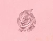 Music Cover Artwork