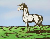 The Next Stallion