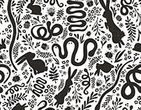 Pattern: Snakes, Rabbits, and Beetles