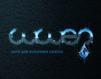 wwes corporate identity