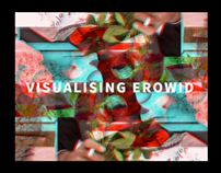 Visualising Erowid