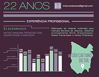 Curriculum infográfico