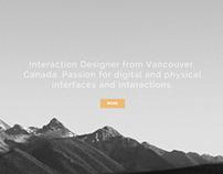 Portfolio Re-Design 2013