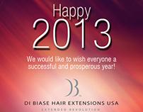 Di Biase Hair Extensions USA - Facebook Imagery