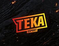 TEKA - Team ESPORT Rainbow Six : Siège