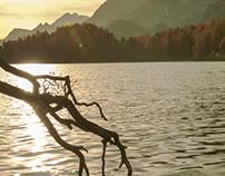 Goldener Herbst / Golden autumn